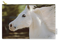 Carry-all Pouch featuring the photograph Pete by Doug Herr