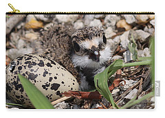 Killdeer Baby - Photo 25 Carry-all Pouch