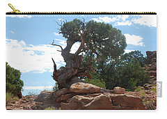 Pine Tree By The Canyon Carry-all Pouch by Dany Lison