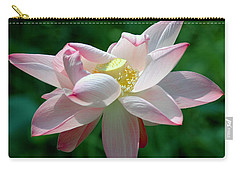 Pink Attraction Carry-all Pouch by LeeAnn McLaneGoetz McLaneGoetzStudioLLCcom