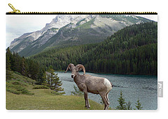Portrait Of A Bighorn Sheep At Lake Minnewanka  Carry-all Pouch