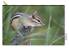 Carry-all Pouch featuring the photograph Portrait Of A Chipmunk by Penny Meyers