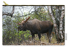 Carry-all Pouch featuring the photograph Poser by Doug Lloyd