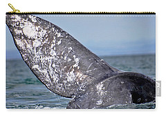Carry-all Pouch featuring the photograph Powerful Fluke by Don Schwartz