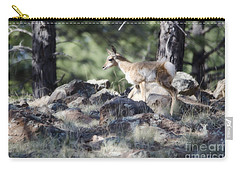 Pronghorn Antelope Fawn Carry-all Pouch