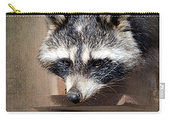 Raccoon 3 Carry-all Pouch by Betty LaRue