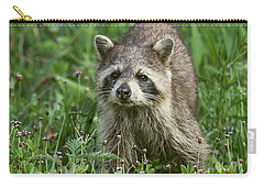 Carry-all Pouch featuring the photograph Raccoon Looking For Lunch by Myrna Bradshaw