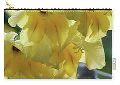 Carry-all Pouch featuring the photograph Radiance by Thomas Woolworth