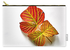 Carry-all Pouch featuring the photograph Raspberry Leaves In Autumn by Sean Griffin