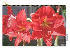 Red Amaryllis Carry-all Pouch by Kume Bryant