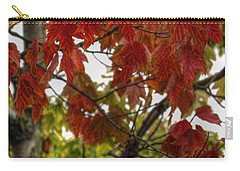 Carry-all Pouch featuring the photograph Red And Green Prior X-mas by Michael Frank Jr