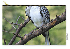 Red-billed Hornbill Carry-all Pouch by Tony Beck
