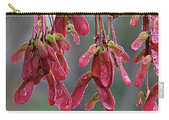 Red Maple Keys With Raindrops Carry-all Pouch