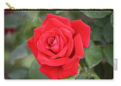 Carry-all Pouch featuring the photograph Red Rose by Donna  Smith