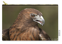 Carry-all Pouch featuring the photograph Red-tailed Hawk by Doug Herr