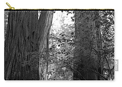 Redwood Pair Carry-all Pouch