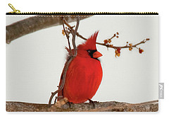Righteous Cardinal Carry-all Pouch