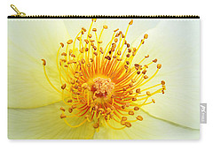 Rosa Golden Wings Carry-all Pouch
