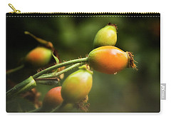 Carry-all Pouch featuring the photograph Rose Hips by Albert Seger