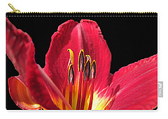 Carry-all Pouch featuring the photograph Royal Red by Debbie Portwood