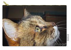 Carry-all Pouch featuring the photograph Runcius- The King Kitty by Ausra Huntington nee Paulauskaite