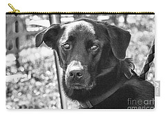 Carry-all Pouch featuring the photograph Sad Eyes by Eunice Gibb