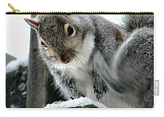 Carry-all Pouch featuring the photograph Scratching An Itch by Rory Sagner