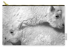 Carry-all Pouch featuring the photograph Sibling Love by Colleen Coccia