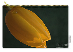 Single Again Carry-all Pouch by Sherry Hallemeier