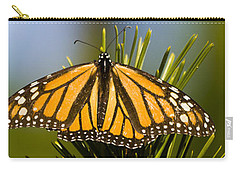 Single Monarch Butterfly Carry-all Pouch by Darcy Michaelchuk