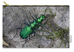 Carry-all Pouch featuring the photograph Six-spotted Tiger Beetles Copulating by Daniel Reed