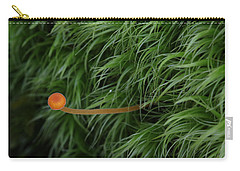 Carry-all Pouch featuring the photograph Small Orange Mushroom In Moss by Daniel Reed