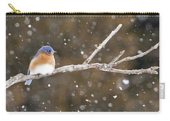 Snowy Bluebird Carry-all Pouch