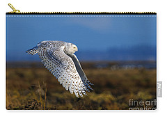 Snowy Owl 1b Carry-all Pouch by Sharon Talson