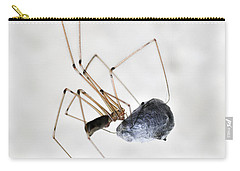Spider Wrapping Fly Carry-all Pouch