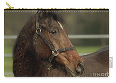 Carry-all Pouch featuring the photograph Splattered by Doug Herr