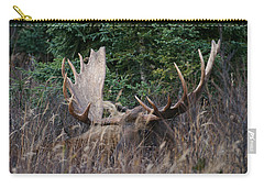 Carry-all Pouch featuring the photograph Splendor In The Grass by Doug Lloyd