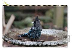 Carry-all Pouch featuring the digital art Steller Jay In The Birdbath by Carol Ailles