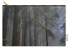 Sun Breaking On Redwoods Carry-all Pouch