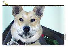 Carry-all Pouch featuring the photograph Sunny by Rory Sagner
