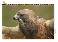 Carry-all Pouch featuring the photograph Swainson's Hawk by Doug Herr