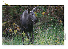 Carry-all Pouch featuring the photograph Sweet Face by Doug Lloyd