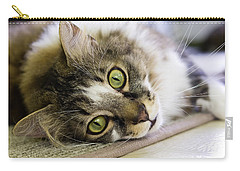Tabby Cat Looking At Camera Carry-all Pouch