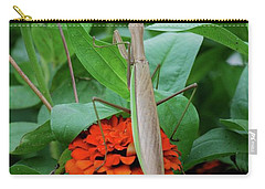 Carry-all Pouch featuring the photograph The Patience Of A Mantis by Thomas Woolworth