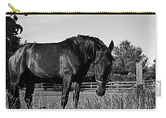 Carry-all Pouch featuring the photograph The Stallion by Davandra Cribbie