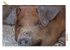 This Little Piggy Took A Nap Carry-all Pouch