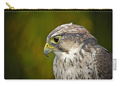 Thoughtful Kestrel Carry-all Pouch