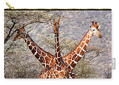 Three Headed Giraffe Carry-all Pouch by Tony Murtagh