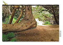 Carry-all Pouch featuring the photograph Tree And Trail by Bill Owen