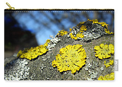 Carry-all Pouch featuring the photograph Tree Lichen by Ausra Huntington nee Paulauskaite